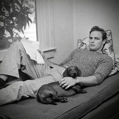Marlon Brando with his Dachshund, Life Magazine. Marlon Brando such a babe Marlon Brando, Chihuahua, Photos Des Stars, People Reading, Actrices Hollywood, Weenie Dogs, Doggies, Dachshund Love, Daschund