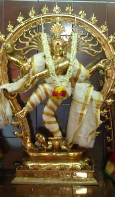 Arudra darshan will be celebrated in Chidambaram Natarajar temple on Jan 11th 2017.