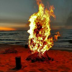 Beautiful burst of flames as a dried out small dead pine tree ignites and burns on the beach along Lake Superior, Upper Peninsula, Marquette MI USA. Upper Peninsula, The Dunes, Open Water, Lake Superior, Hiking Equipment, Water Crafts, Wilderness, Michigan, Sailing