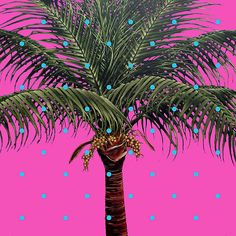 Robert Charles Dunahay:  Photorealist Palm Tree Paintings, oil on canvas