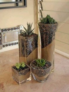 Small garden in a glass bowl - arrangement ideas with succulents - best decoration ideas - Garden Care, Garden Design and Gardening Supplies