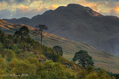 https://flic.kr/p/gjKBTH | Caledonian Forest | Glen Falloch, Trossachs: the remnants of the ancient Caledonian Forest on the lower slopes of An Caisteal are outlined in the evening light against Beinn Chabhair.  A quick grabshot on the way back home from a Sunday photoshoot in Perthshire.  www.karlwilliamsphotography.co.uk