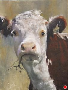 Daria Schachmet, love her cows!