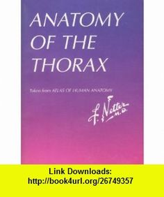 ANATOMY OF THE THORAX. Taken from ATLAS OF HUMAN ANATOMY Frank H. NETTER ,   ,  , ASIN: B002SBXDTY , tutorials , pdf , ebook , torrent , downloads , rapidshare , filesonic , hotfile , megaupload , fileserve