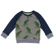 WAS £28.00 NOW £19.99 || Retro Dino Sweater by Lilly & Sid