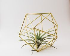 Himmeli fig. 5 - The Orb | Brass, Modern Minimalist Geometric Hanging Ornament, Mobile, Desk Ornament, Centerpiece and Air Plant Holder by handmadesammade on Etsy https://www.etsy.com/listing/197570781/himmeli-fig-5-the-orb-brass-modern