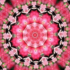 Radial Roses Kaleidoscope Art Art Print
