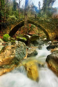 Arched eyebrows like stone bridges - Tsagarada, Magnisia