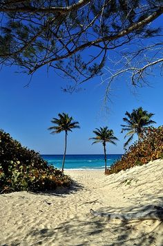 Cuba- the most amazing place I've ever been. 2012 x x x Beautiful Islands, Beautiful Beaches, Places To Travel, Places To Visit, Visit Cuba, Cuba Travel, Havana Cuba, Beach Resorts, Playa Beach