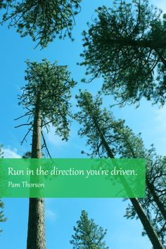 """""""Run in the direction you're driven."""" - Pam Thorson. #quotes #caregivers #determination"""