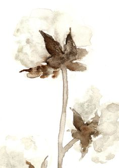 Natural Cotton Flower Watercolor Painting Brown by ColorWatercolor