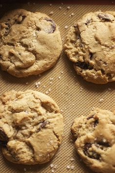 I keep hearing this: Hands down the BEST choco chip cookie including Nestle's.    David Leite's chocolate chip cookies - gluten free via glutenfreegirl.com