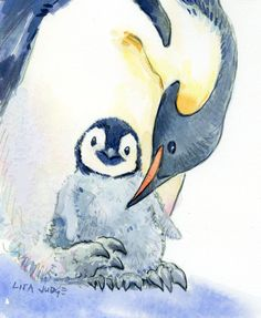 Penguins More