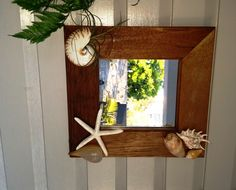 Rustic Timber mirror - Nautilus, star fish, air plant and various other sea shells