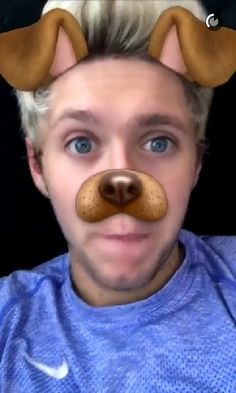 """""""Hey I'm Niall I'm 21 and single, I love music and food!"""" I laugh a little """"I'm really outgoing, I'm part of one direction but right now we're on a break. Niall Horan Snapchat, Niall Horan Facts, Niall Horan Imagines, Louis Tomlinson Snapchat, James Horan, All You Need Is, Snapchat Faces, Harry Styles, Baby Boys"""