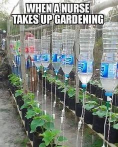 This is How a Nurse Does Gardening  http://funphotololz.com/funny/this-is-how-a-nurse-does-gardening/
