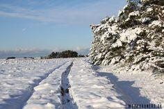 Winter in Nordsjælland
