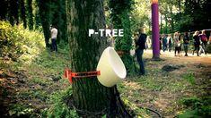 P-Tree AANDEBOOM