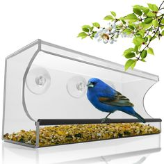 Large Clear Window Bird Feeder - Unique See Through Design. Enjoy Wild Birds Up Close From Inside Your House. Best For Bird Watching Enthusiasts, Kids, And Pets. Mounts With 3 All-Weather Suction Cups