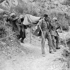 BATTLE CASSINO JANUARY-MAY 1944 (NA 12032)   Second Phase 15 February - 10 May 1944: Attempts by New Zealand and Indian troops in the aftermath of the first air raids failed and the battle was broken off on 18 February 1944. Indian stretcher bearers bringing a casualty down a mountain track on the following day.