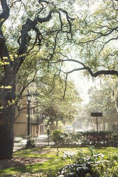 Savannah, Georgia Guide / an absolutely darling town that I got to know while working there for 6 months - loved it!