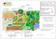 Préparer son jardin potager en permaculture