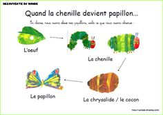 Printer Projects New York Printer DIY Building Code: 9139280767 Eric Carle, Learning French For Kids, French Language Learning, Close Reading Activities, Writing Activities, Montessori Science, Preschool, Very Hungry Caterpillar, French Lessons