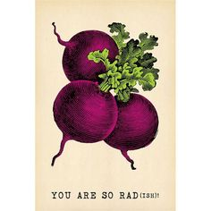 Sugarboo Designs You Are So Rad(ish) Postcard