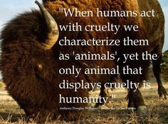 cruelty to animals quote  And isn't that the TRUTH!