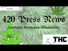 #420 Press News #Cannabis #Marijuana Information