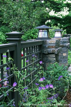Garden Ideas New England plants to love in your new england landscape | landscaping, plants