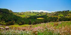 Google Image Result for http://www.photographybyjohncorney.com/galleries/newzealandmountainlandscapes/photos/new_zealand_rural_landscape_3236.jpg