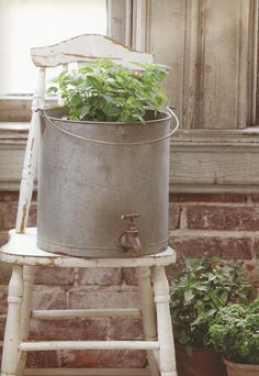 Galvanized Water Bucket Planter; Farmhouse Wears; farmhouse shabby chic; shabby white chair