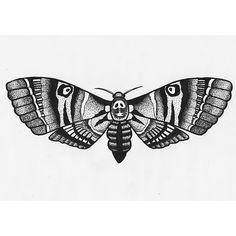 drawing art artwork skull moth pen and ink dot work pointalism hawk moth death head moth death head