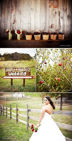 missouri_apple_orchard_wedding_1 love the location perfect for a fall wedding!