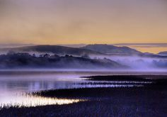 fog over the scottish moores -