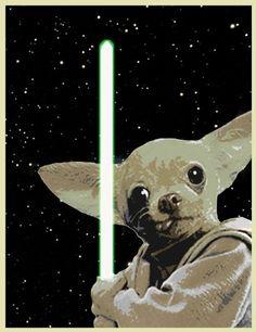 Star Wars Chihuahua Yoda http://www.etsy.com/listing/71058857/digital-print-chihuahua-yoda-star-wars