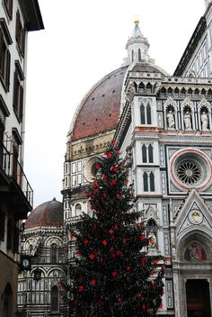 Wishing for a Tuscan Christmas? Let us help you get there: http://www.terravision.eu/florence_pisa.html