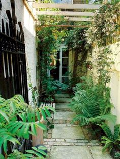 Troubleshooting ideas for a problematic narrow garden space. Troubleshooting ideas for a problematic narrow garden space. Small Courtyard Gardens, Small Courtyards, Small Gardens, Outdoor Gardens, Side Gardens, Small Terrace, Small Space Gardening, Small Garden Design, Small Narrow Garden Ideas