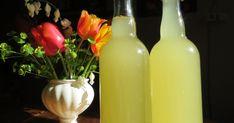 Recette de la limonade lacto-fermentée aux fleurs de pissenlit, déposée par un contributeur sur cuisinesauvage.org, un site consacré aux plantes sauvages comestibles