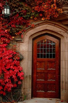 pointed arch top paneled door with upper lites