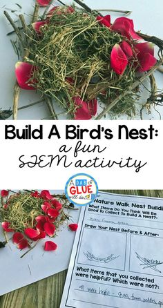 Preschoolers love birds! They are fascinating and when a bird is building it's nest, there are tons of great preschool science concepts to cover. Introduce your students to life of a bird with this build a bird's nest STEM activity!