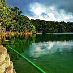 Lake Eacham, Atherton Tablelands, FNQld. Atherton Tablelands, Stuff To Do, Things To Do, Family Road Trips, I Want To Travel, Queensland Australia, Cairns, Golf Courses, Wanderlust