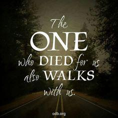 Walks with us