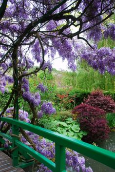 Logic behind Alzheimer's Fear and Emotion Purple wisteria blooming on the Japanese bridge. Water lily pond in Monet's Garden - Giverny, FrancePurple wisteria blooming on the Japanese bridge. Water lily pond in Monet's Garden - Giverny, France Giverny France, Beautiful Landscapes, Beautiful Gardens, Monet Garden Giverny, Parcs, Claude Monet, Dream Garden, Belle Photo, Garden Inspiration