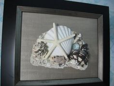 Original Framed Seashell Art  Black Frame with by seasideshells, $55.00