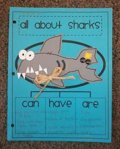 ShaRks!  can. have. are. and build then label the concept