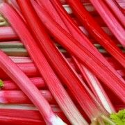 Rhubarb - such a fabulous colour and tastes delicious