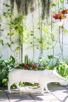 Plant Installation Inspiration: Plant the Future