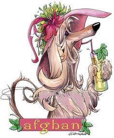 The sweet life being an afghan hound ;)